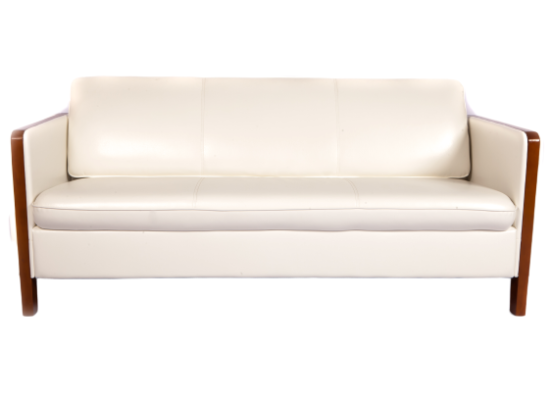 Elite Sofa