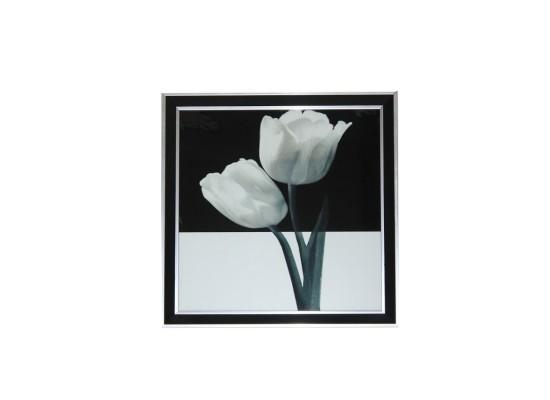 tulips (print 18)