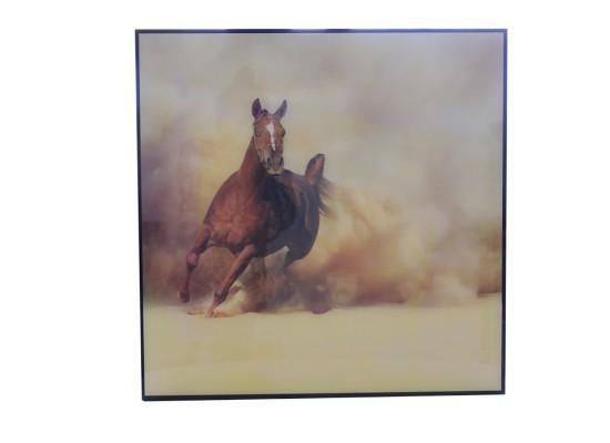Horse (print 40)
