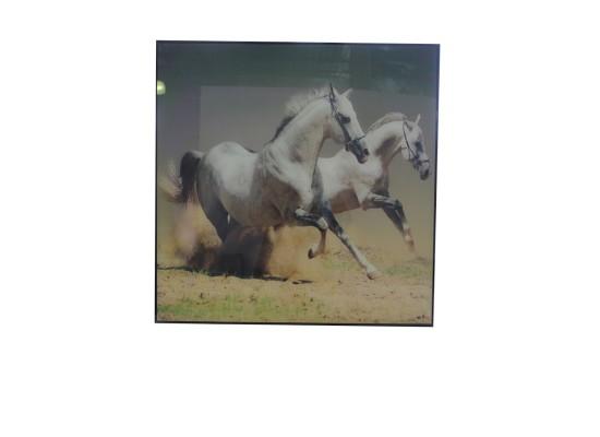 horse (print 41)