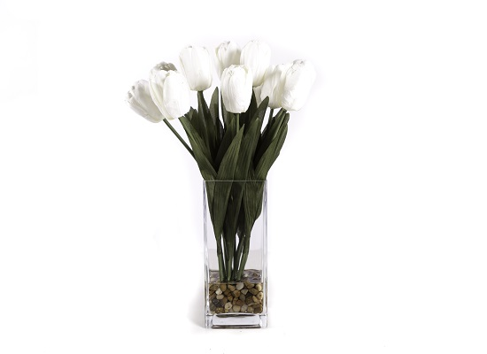 WHITE TULIPS (FLO 17)