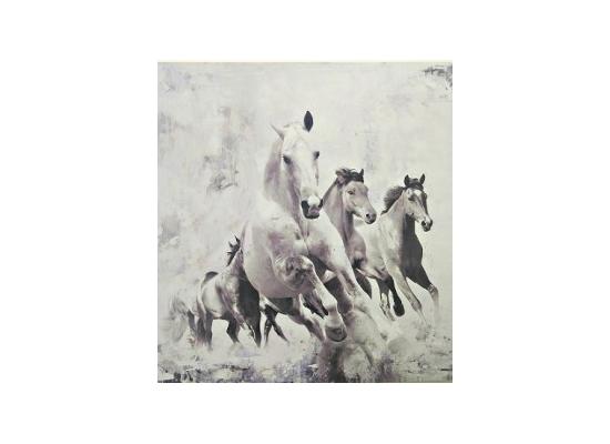 White Horses (print 46)