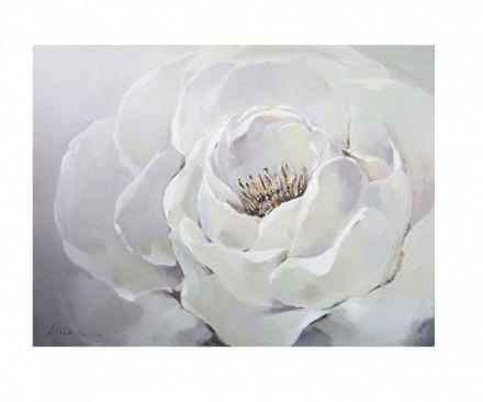 Pristine White (print 81)
