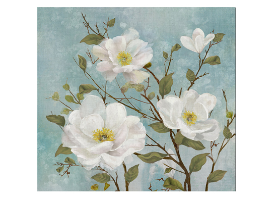 apple blossoms (print 116)