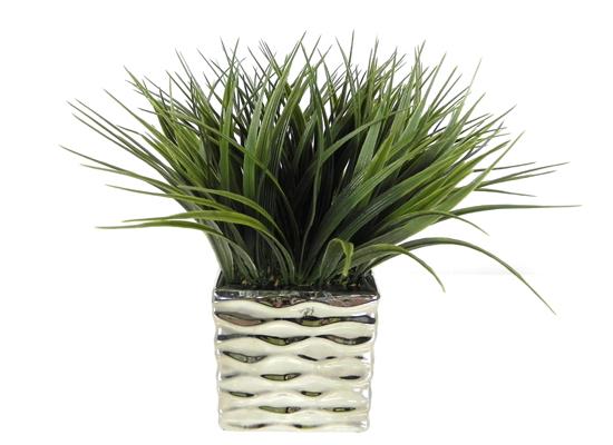Grass Plant (FLO 33)