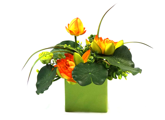 plant (FLO 45)
