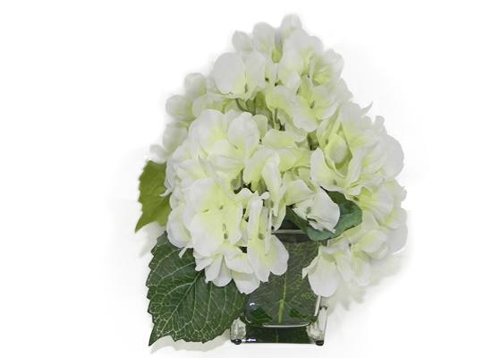 White Hydrangea (FLO 38)