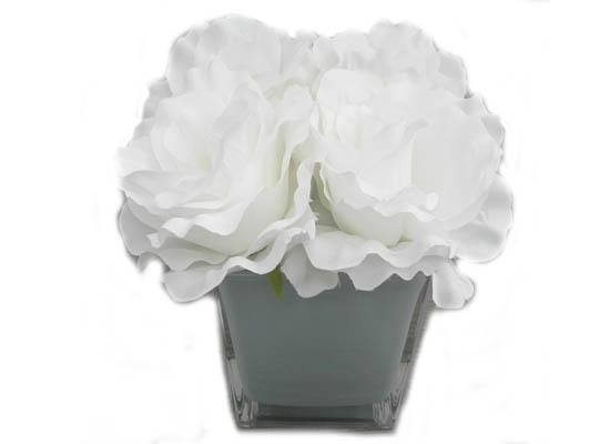 Whites roses FLO 54