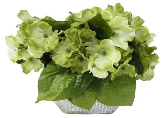 green Hydrangea (flo 93)