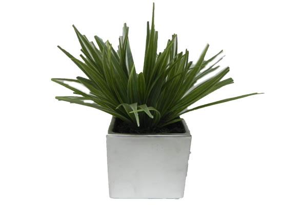 grass (flo 70)