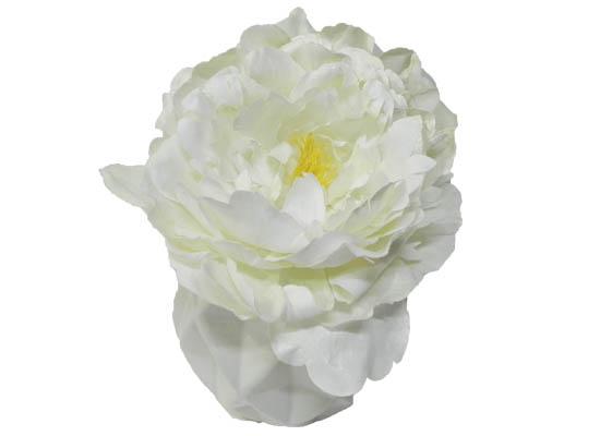 white peony (flo 72)