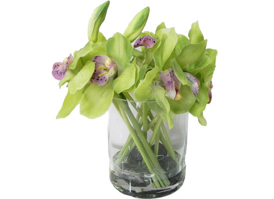 small orchid: Green (flo 94)