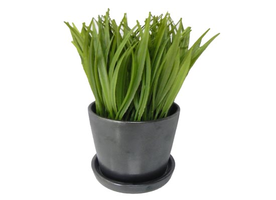 small grass (flo 103)