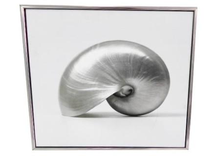 snail (print 169)