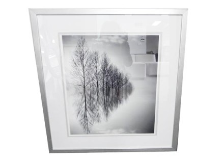 black and white forest (print 141)