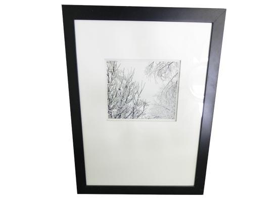 frozen stick (print 174)
