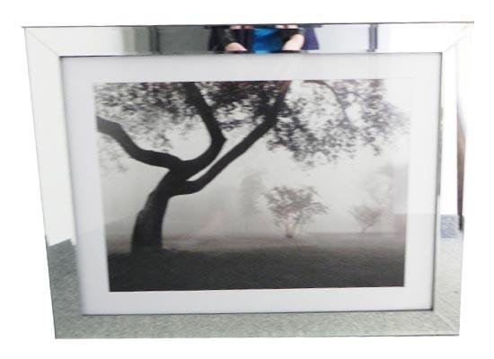 misty park (print 176)