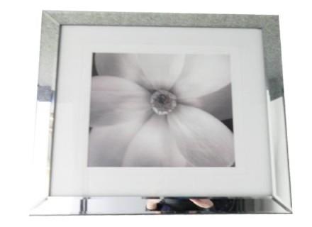 white flower (print 178)