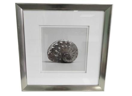 snail 2 (print 189)