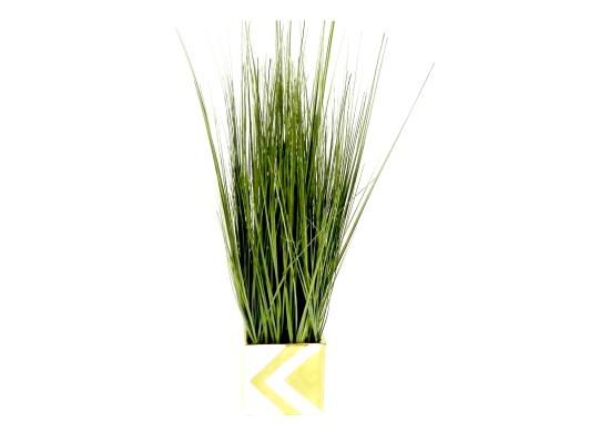 Sassy Grass (FLO202)