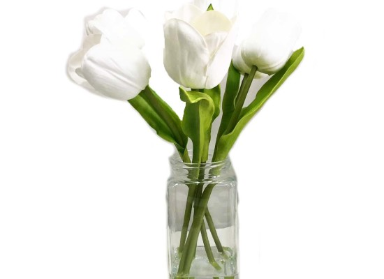 FOUR WHITE TULIPS (FLO301)