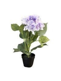 Tall Purple Flower (FLO223)