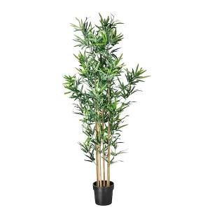 Bamboo Tall Tree (FLO312)